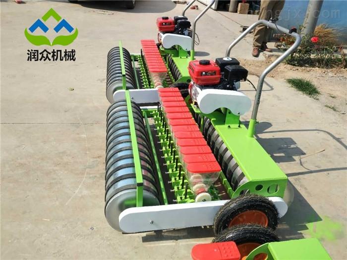 手推式芹菜播种机 农村大棚专用蔬菜种植机