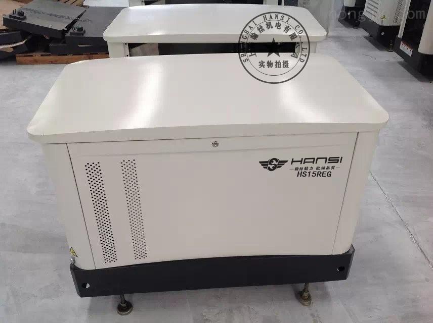 翰丝15KW汽油发电机