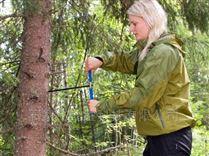 40厘米树木生长锥