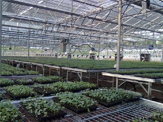 温室喷灌机自动洒水车价格请咨询华耀农业