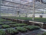 温室喷灌系统A移动喷灌机莆田生产厂家价格