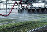 大棚育苗智能洒水车移动喷灌机厂价销售