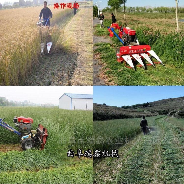 四轮配套玉米芦苇收割机