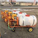 汽油高壓泵手推式噴藥機 高壓遠程打藥機