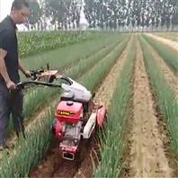 种植栽葱开沟机 电启动管理机