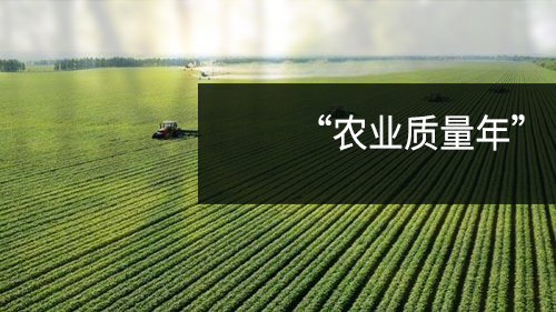 """2018湖北推行""""农业质量年""""建设 确保农产品绿色安全"""