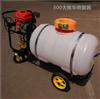 手推式卷管喷雾机 多功能农用打药机