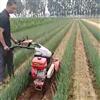 旱春甜瓜中耕机 大葱封沟培土机